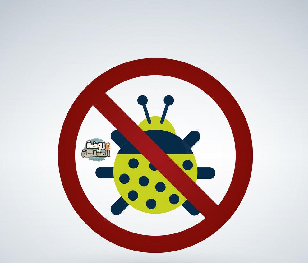 شركة مكافحة حشرات باحد رفيدة